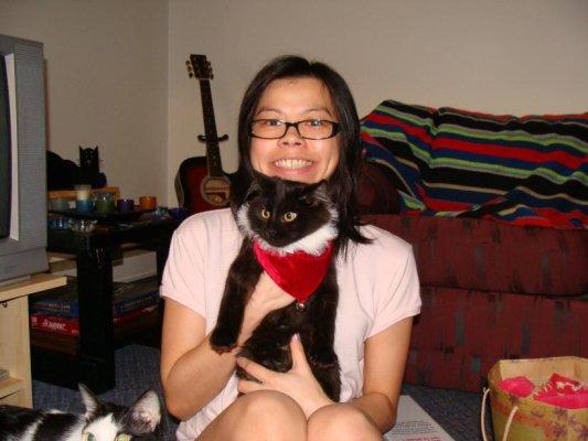 給貓貓買了聖誕領巾